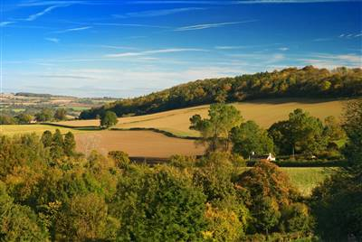 Farmland to let in yorkshire